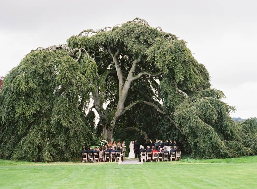 Ireland destination wedding ceremony under a big tree