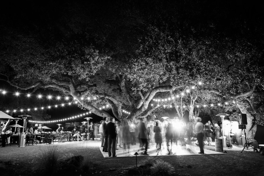 dancing at night under a tree