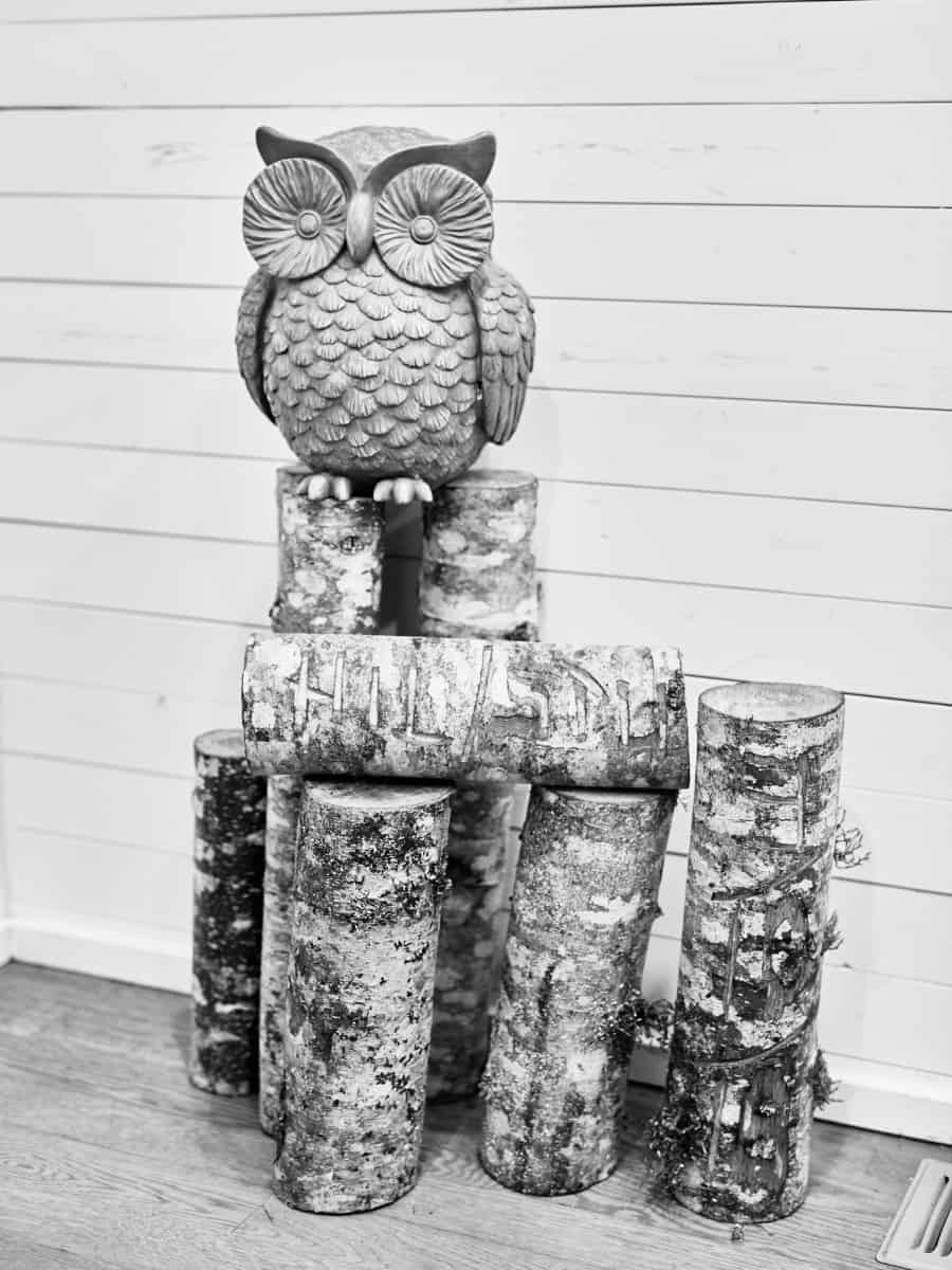 retro owl and wood logs