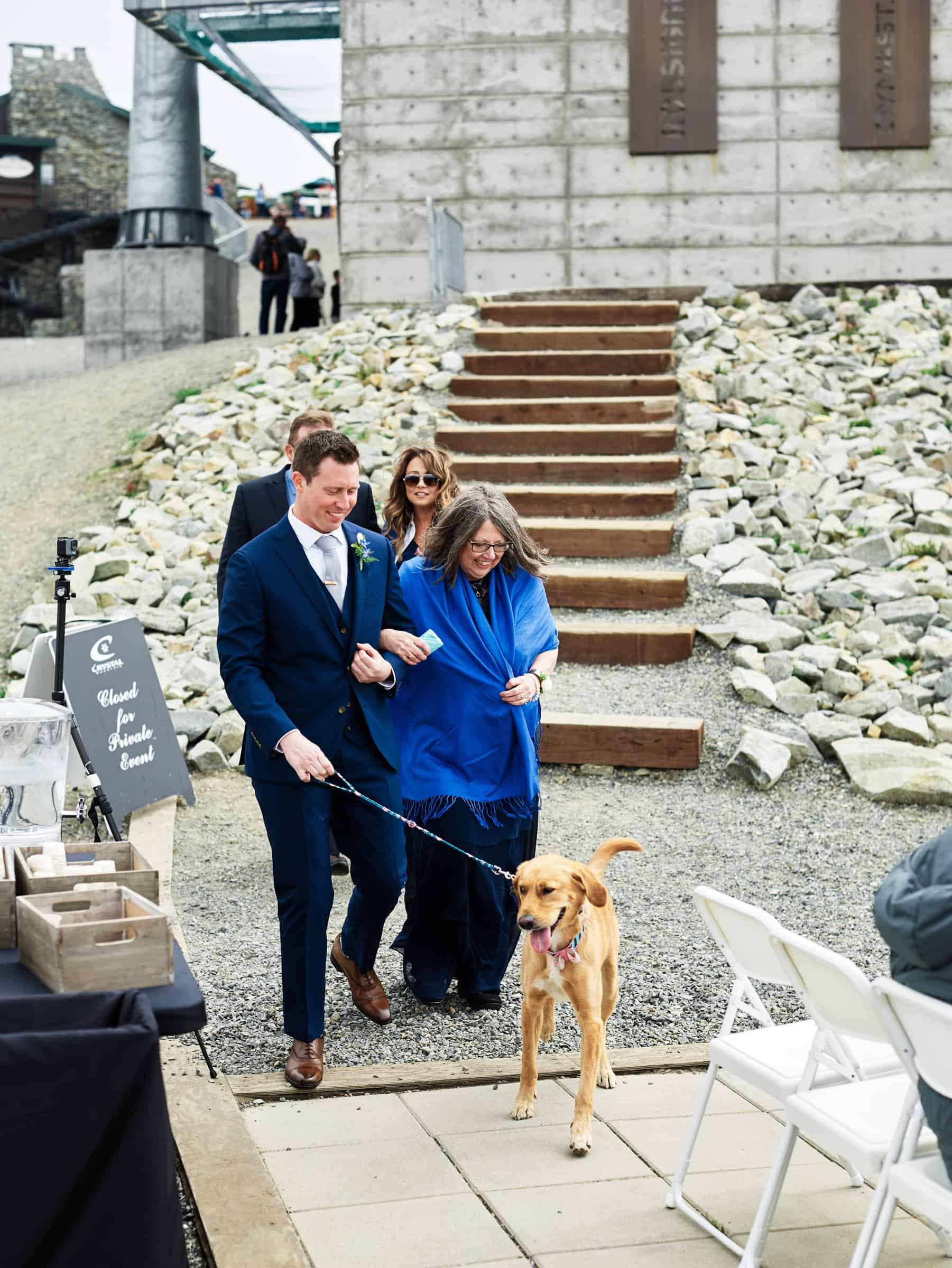 dog wedding processional
